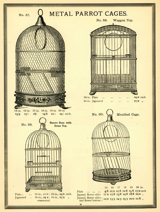 Wire mesh parrot cages